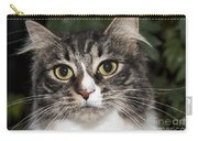 Portrait Of A Cat With Two Toned Eyes Carry-all Pouch