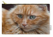 Portrait Of An Orange Kitty Carry-all Pouch