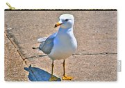 Posing Gull Carry-all Pouch
