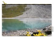 Postcard From Alpes Carry-all Pouch