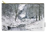 Powerscourt Waterfall In Winter, County Carry-all Pouch