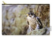 Prairie Falcon On Rock Ledge Carry-all Pouch