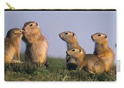 Prarie Dog Family Carry-all Pouch