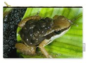 Pratts Rocket Frog With Young Carry-all Pouch