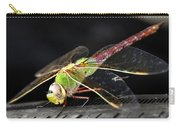 Praying Dragon Carry-all Pouch