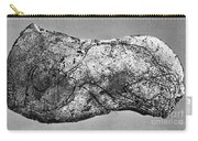 Prehistory: Engraving Carry-all Pouch