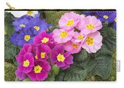 Primrose Primula Sp Flowers Carry-all Pouch