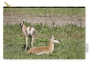 Pronghorn Antelope With Young Carry-all Pouch