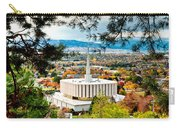 Provo Temple Pine Frame Carry-all Pouch
