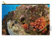 Pufferfish And Reef, La Paz Mexico Carry-all Pouch