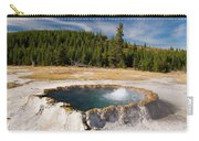 Punchbowl Spring Carry-all Pouch