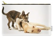 Pup Biting Lab On The Ear Carry-all Pouch by Mark Taylor