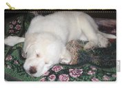 Puppy Nap Carry-all Pouch