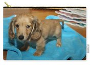 Puppy On Blue Blanket Carry-all Pouch