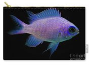 Purple Chromis Carry-all Pouch