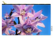 Purple Hosta Blooms Carry-all Pouch