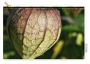 Purple Tomatillo Carry-all Pouch