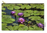 Purple Water Lilies - Nymphaea Capensis  Carry-all Pouch