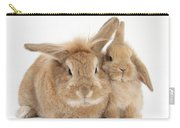 Rabbit And Baby Rabbit Carry-all Pouch