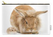 Rabbit And Dwarf Hamster Carry-all Pouch