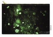 Rabies Virus, Immunofluorescent Lm Carry-all Pouch