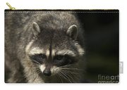 Raccoon 2 Carry-all Pouch