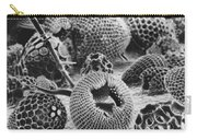 Radiolarians Sem Carry-all Pouch