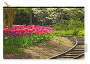 Railroad Beauties Carry-all Pouch
