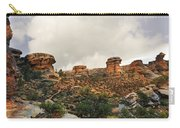 Rain At The Needles District Carry-all Pouch