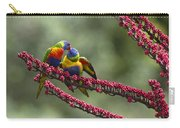 Rainbow Lorikeet Feeding Fledgling Carry-all Pouch