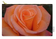 Raindrops On Roses Seven Carry-all Pouch