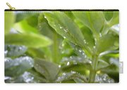 Raindrops On Sedum Carry-all Pouch