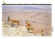 Ramon Crater Negev Israel Carry-all Pouch