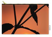 Raphael Sunset 1 Carry-all Pouch