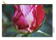 Raspberry Swirl Rose Carry-all Pouch