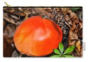 Red Amanita Carry-all Pouch