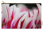 Red And White Tulips In Holland Carry-all Pouch