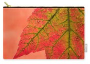 Red Autumn Carry-all Pouch by Carol Leigh