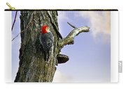 Red-bellied Woodpecker - Male Carry-all Pouch