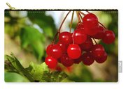 Red Bunch Carry-all Pouch by LeeAnn McLaneGoetz McLaneGoetzStudioLLCcom
