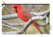 Red Cardinal  Carry-all Pouch