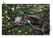 Red-eyed Vireo Feeding Cowbird Fledgling Carry-all Pouch