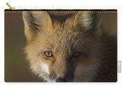 Red Fox Vulpes Vulpes Portrait, Alaska Carry-all Pouch