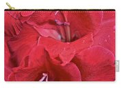 Red Gladiolus Carry-all Pouch by Susan Herber