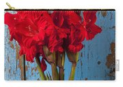 Red Glads Against Blue Wall Carry-all Pouch