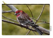 Red Head Black Tail Carry-all Pouch