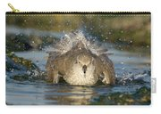 Red Knot Calidris Canutus Bathing, Den Carry-all Pouch