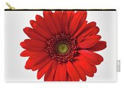 Red Mum In Striped Vase Carry-all Pouch