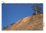 Red Pine Tree Carry-all Pouch by Ted Kinsman