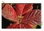Red Quintete Carry-all Pouch